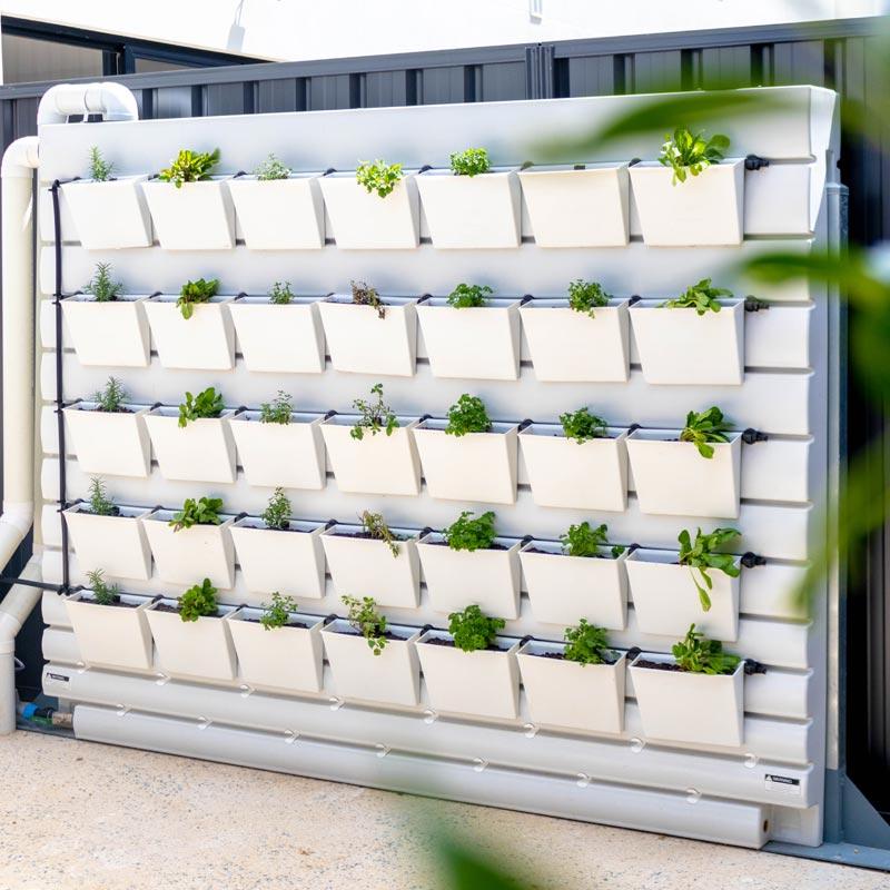 rain water plant boxes